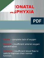 Neonatal Asphyxia Presentation