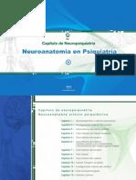 Neuroanatomia en Psiquiatria