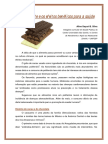 Beneficios-do-cacau.pdf