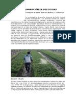 Ecologia Pesticidas y Bosques