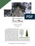 Óleo Essencial de Tuia