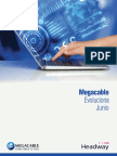Reporte Megacable Evoluciona Junio 2