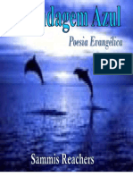 A Blindagem Azul poesia evangélica
