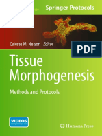 (Methods in Molecular Biology 1189) Celeste M. Nelson (Eds.)-Tissue Morphogenesis_ Methods and Protocols-Humana Press (2015)