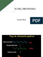 Ivonne Molecular 2