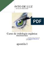62788720-Curso-de-Iridologia-Apostila.pdf