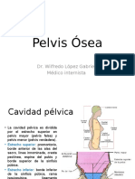 1. Pelvis Ósea