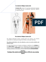 Core & Pelvis - The Anterior Oblique System