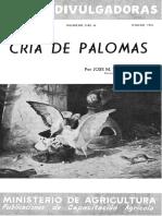 Palomas 7