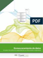 Guía Enmascaramiento de Datos.pdf