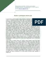 Primer biznis plana pdf download