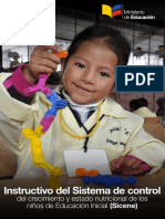 Instructivo-SICENE.pdf