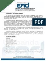 01 - Apostila 01.pdf