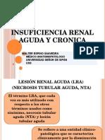 Insuficiencia Renal Aguda y Cronica