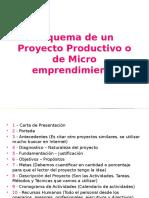 Esquema de Un Proyecto Productivo o de Micro