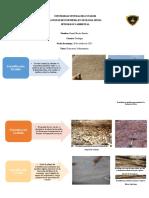 estructuras sedimentarias.docx