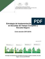 Estrategia Implementación PACE PETC PES_2015_2016