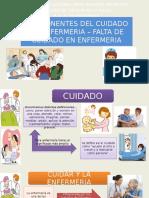 Componentes Del Cuidado de Enfermeria – Falta de Cuidado en Enfermeria