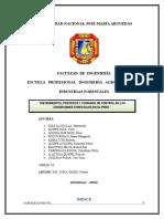 """""""Instrumentos, Procesos y Comando de Control en Las Concesiones Forestales en El Perú."""""""