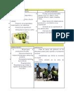Analisis FODA Del Producto