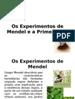 20121101092117_Os Experimentos de Mendel e a Primeira Lei-2012