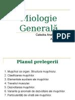 muschii pdf.ppt