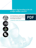 Pedigree dog breeding in the UK