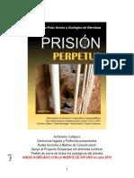 OSO POLAR ARTURO Prision Perpetua Julio 2016