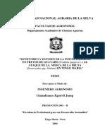 Monitoreo y estudio de la susceptibilidad en frutos de guayabo (Psidium guajava L.) al ataque de la mosca de la fruta (Anastrepha spp. Schiner) en Tingo María.