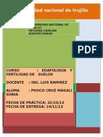 DETERMINACIÓN DE LA MATERÍA ORGÁNICA DEL SUELO.docx