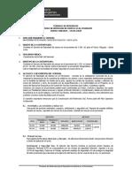 TDR REPINTADO MARCA EN EL PAVIMENTO CHIGUATA.doc
