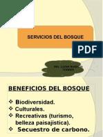 Tema 3. Servicios Del Bosque