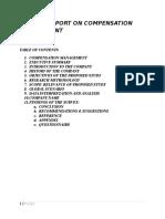 105692419 Project Report on Compensation Management