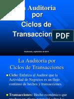 Auditoría Por Ciclo de Transacciones