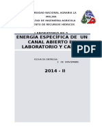 Laboratorio Energia especifica