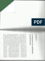 Capitulo 7 1.pdf