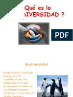 Presentación2 Biodiversidad V