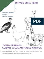 ANIMALES NATIVOS EN EL PERU.docx