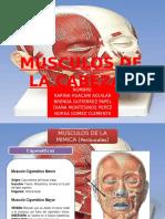 Musculos de la cabeza (9).pptx