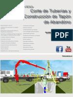 TOS-005A-C TOP Oil Tapon de Abandono