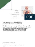 Aparato Respiratorio en El Ejercicio