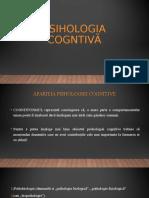 Seminar Psihologie Cognitivă (1)