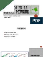 EL RIEGO EN LA SIERRA PERUANA.pdf