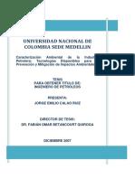 TESIS FINAL - Impactos Ambientales.pdf