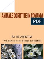Animale Ocrotite in Romania