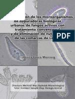 70205462-Concurso-Microbiologia-GBS-Segundo-premio-2008-Hydrolab-Vasco-J-Mas-M-UB-Salvado-H.pdf