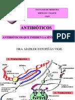 Antibioticos Que Inhiben Sintesis Proteica