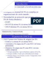 DHCP-P