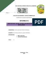 informe-4-tintes.docx