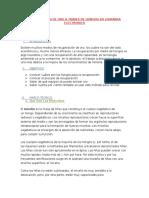 OBTENCION DE ORO POR HONGOS.docx